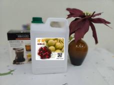 桂園紅棗茶糖漿